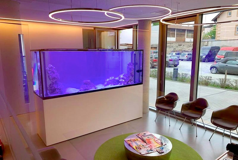 PlanktonPlus Aquarienservice