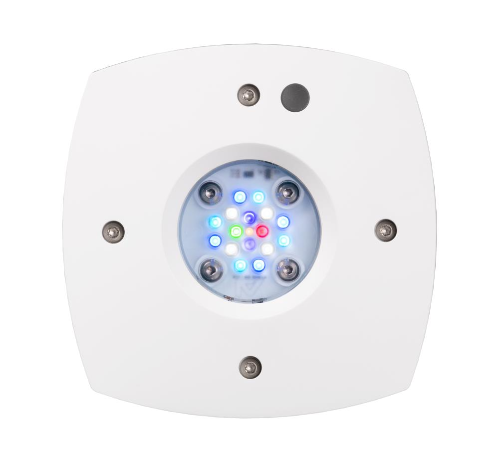 AI Prime 16HD Reef LED weiß